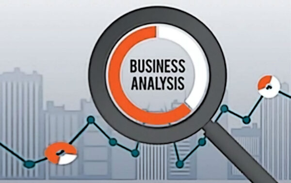 analisi business